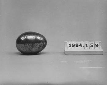 1984.159 (RS115783)