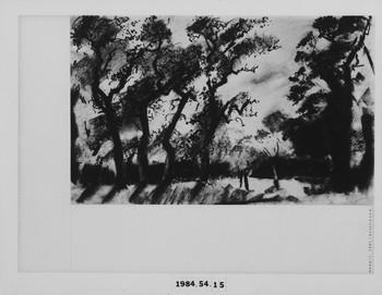 1984.54.15 (RS115800)