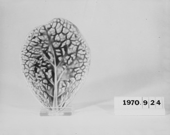 1970.924 (RS115851)