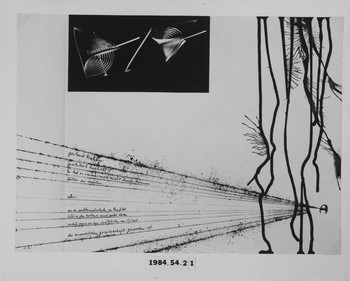 1984.54.21 (RS116119)