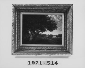 1971.514 (RS116321)