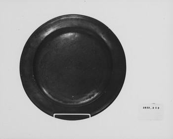 1977.313 (RS116552)