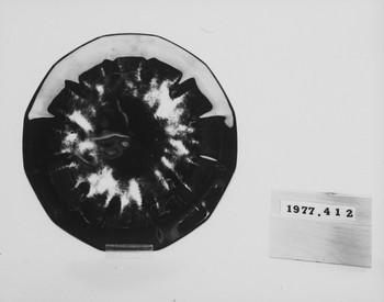 1977.412 (RS116652)