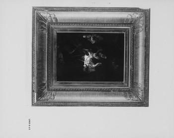 1969.846 (RS117193)