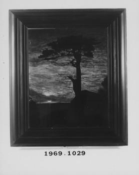 1969.1029 (RS117240)