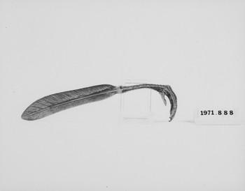 1971.888 (RS117859)