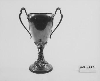 1971.1773 (RS118389)