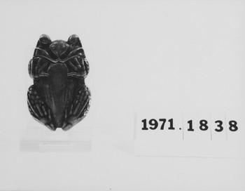 1971.1838 (RS118429)