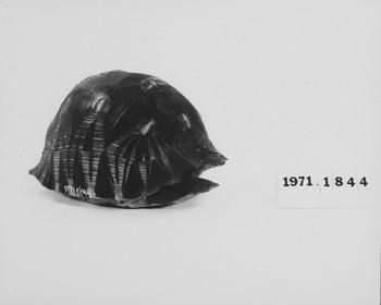 1971.1844 (RS118435)