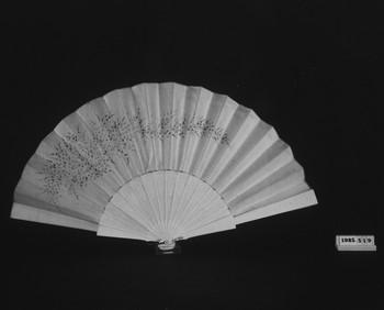 1985.519 (RS118736)