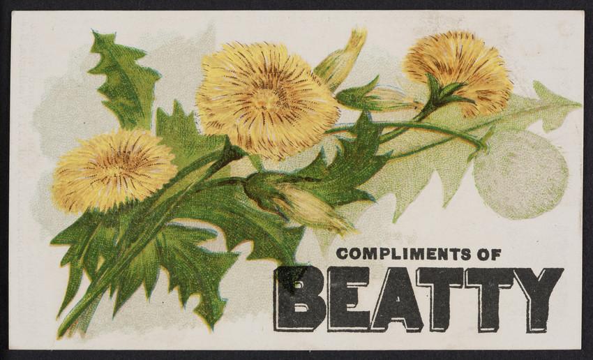 Trade card for the Beatty Organ, Daniel F. Beatty, Washington, New Jersey, undated