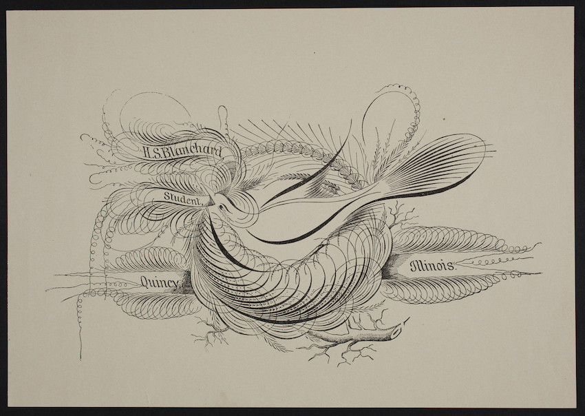 Sample sheet, bird above a banner, H.S. Blanchard, Quincy, Illinois, undated