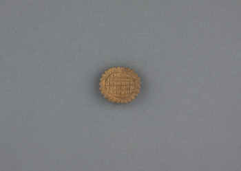1917.1013 (RS231270)